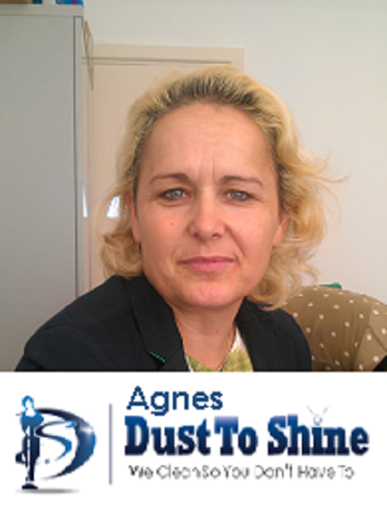 Agnes-DustToShine-Cleaner-2